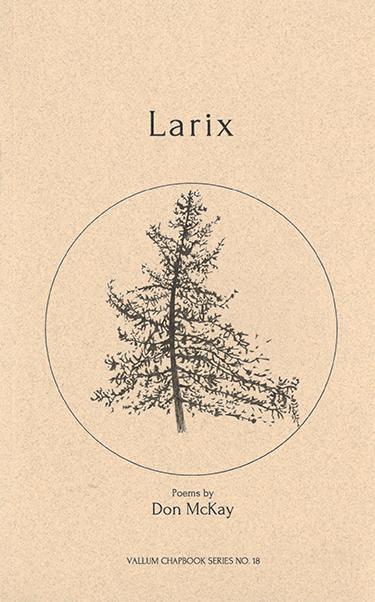 ZINES_Larix